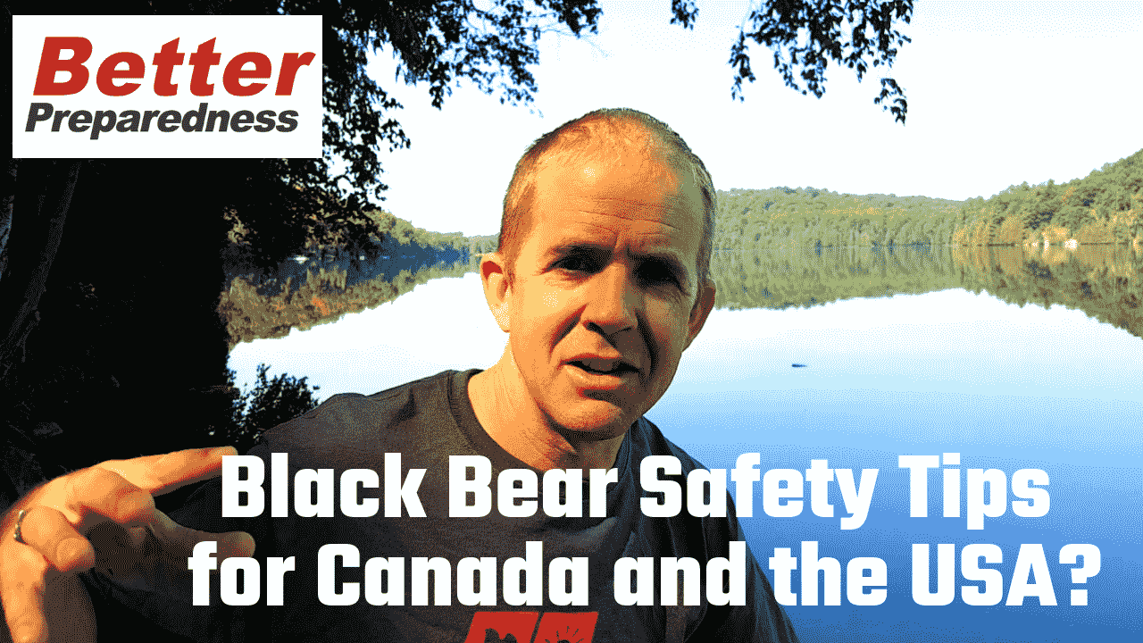 Black Bear Safety Tips for Safer Experiences in the Outdoors